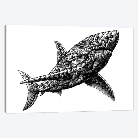 Great White Shark Canvas Print #BWZ10} by Bioworkz Canvas Artwork