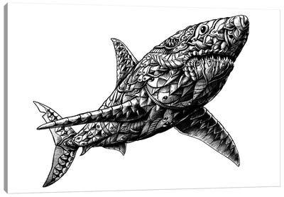 Great White Shark Canvas Art Print