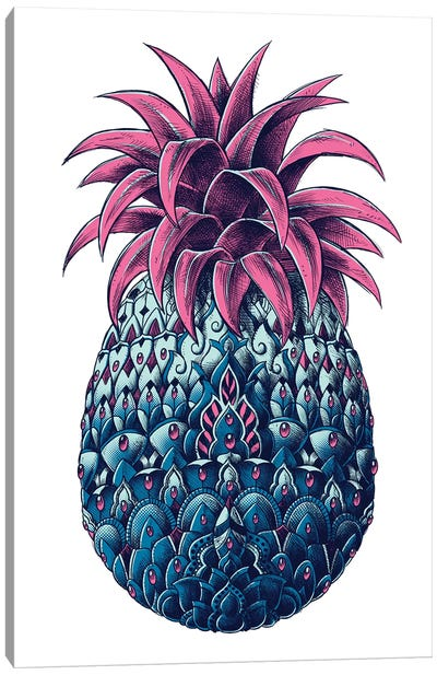 Pineapple In Color II Canvas Art Print