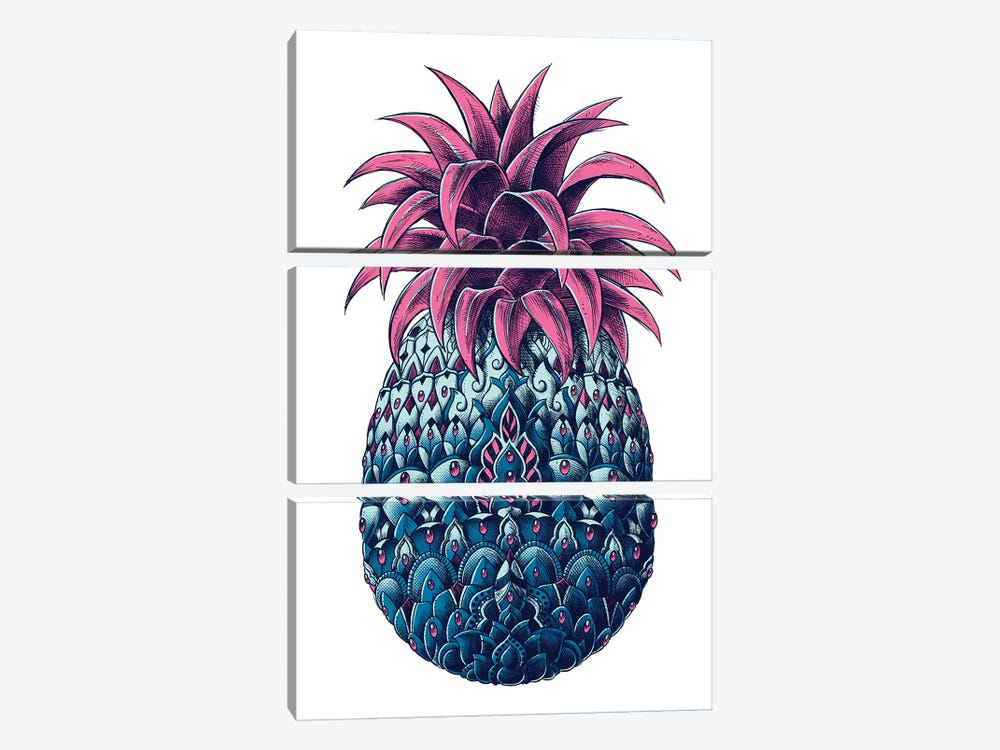 Pineapple In Color II by BIOWORKZ 3-piece Canvas Artwork