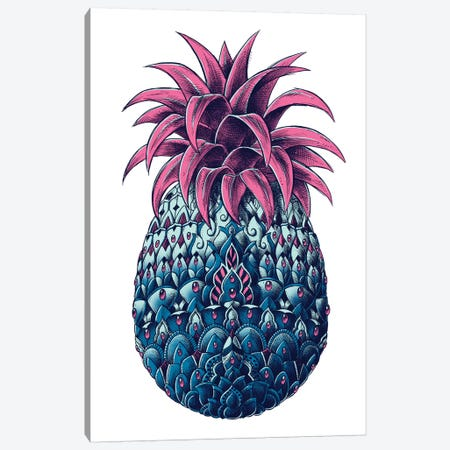 Pineapple In Color II Canvas Print #BWZ116} by Bioworkz Canvas Wall Art