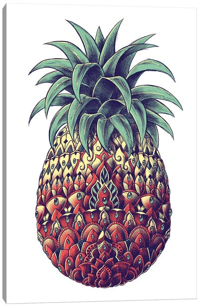 Pineapple In Color III Canvas Art Print