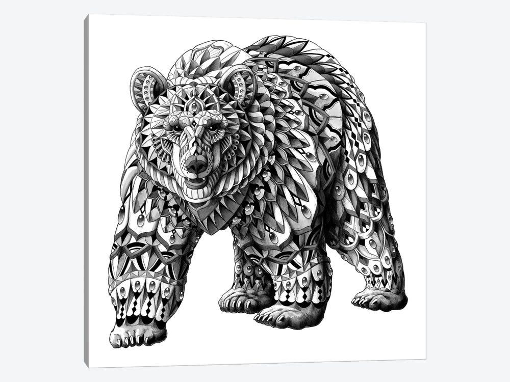 Grizzly Bear by Bioworkz 1-piece Canvas Art Print