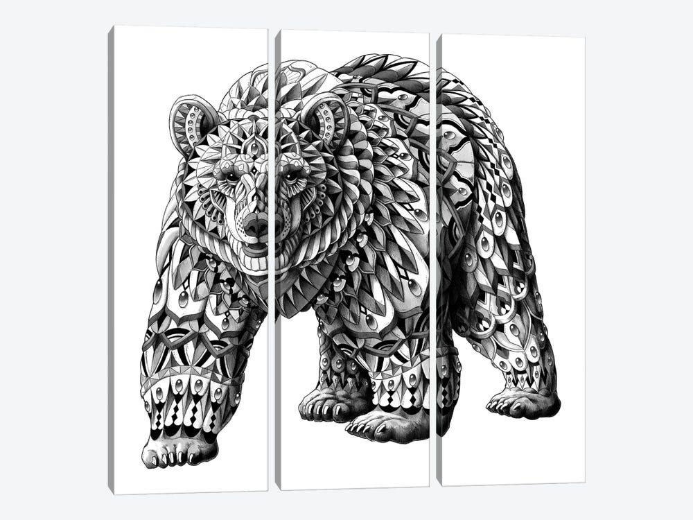 Grizzly Bear by Bioworkz 3-piece Canvas Art Print