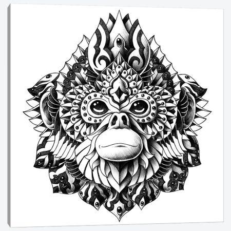 Snub-Nosed Monkey Canvas Print #BWZ121} by Bioworkz Canvas Art
