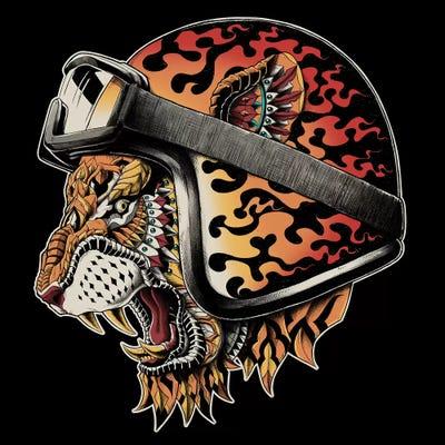 helm tigers eye repeat - 750×750
