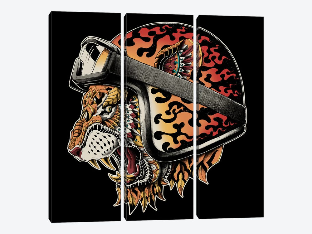 Tiger Helm In Color by BIOWORKZ 3-piece Canvas Art Print
