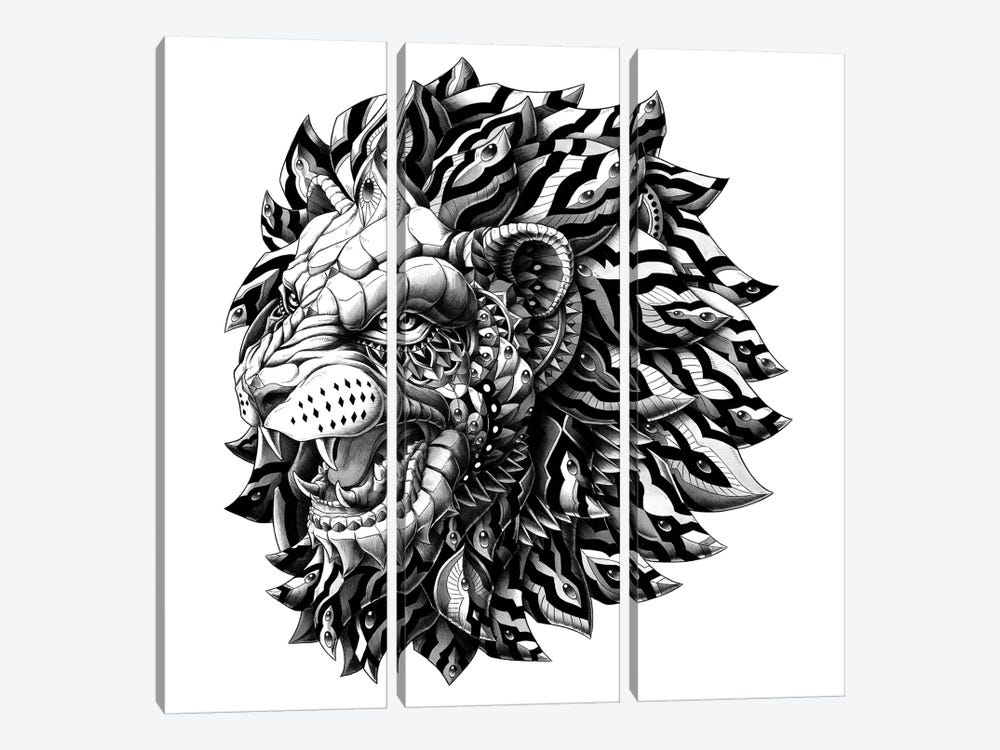 Lion by Bioworkz 3-piece Canvas Print