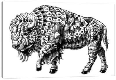Ornate Bison Canvas Art Print