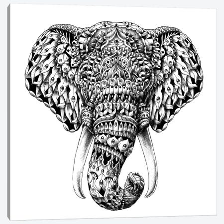 Ornate Elephant Head Canvas Print #BWZ17} by Bioworkz Canvas Art Print