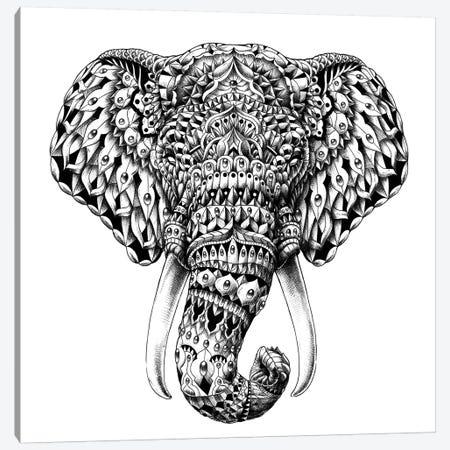 Ornate Elephant Head Canvas Print #BWZ17} by Bioworkz Canvas Art Print