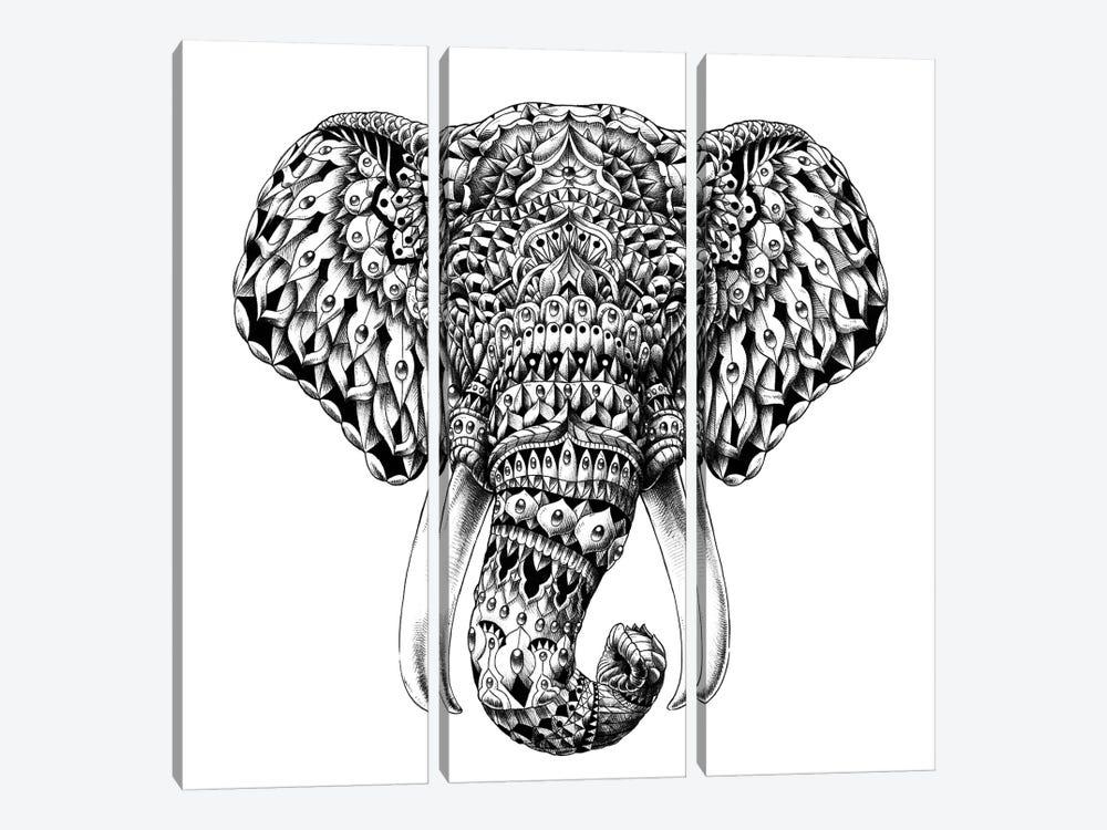 Ornate Elephant Head by Bioworkz 3-piece Canvas Print