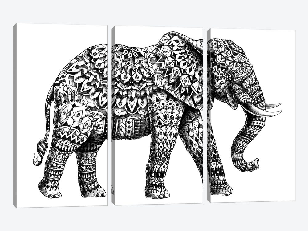 Ornate Elephant II by Bioworkz 3-piece Canvas Art Print