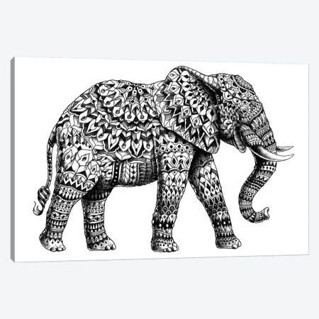 Ornate Elephant II Canvas Print #BWZ19} by Bioworkz Canvas Art