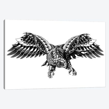 Ornate Falcon Canvas Print #BWZ20} by Bioworkz Canvas Print