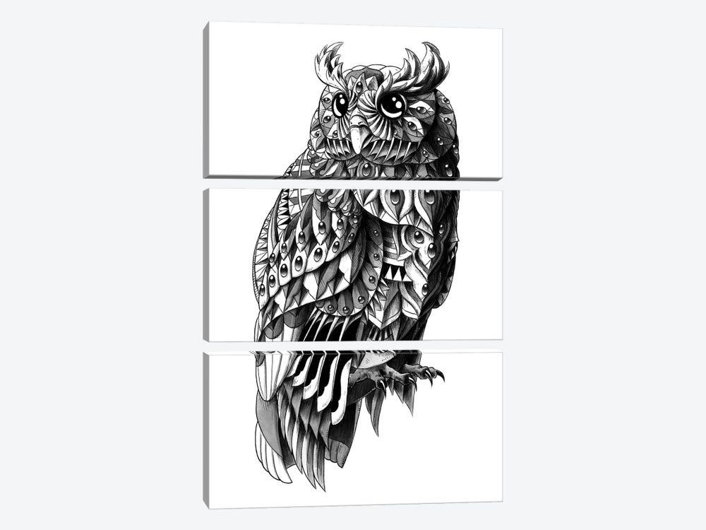 Ornate Owl by Bioworkz 3-piece Canvas Art