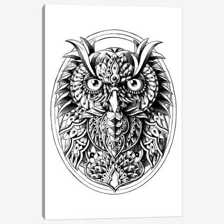 Owl Portrait Canvas Print #BWZ25} by Bioworkz Canvas Artwork