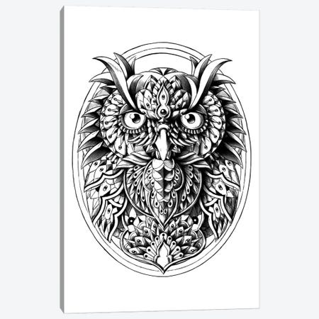 Owl Portrait Canvas Print #BWZ25} by Bioworkz Canvas Artwork