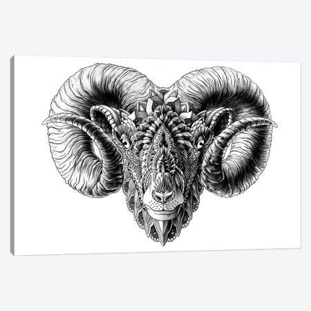 Ram's Head Canvas Print #BWZ27} by Bioworkz Canvas Artwork