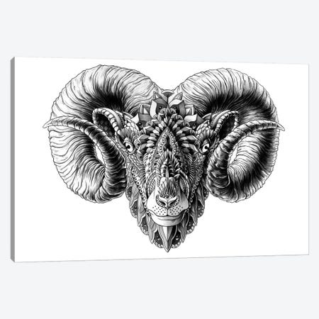Ram's Head Canvas Print #BWZ27} by Bioworkz Canvas Artwork