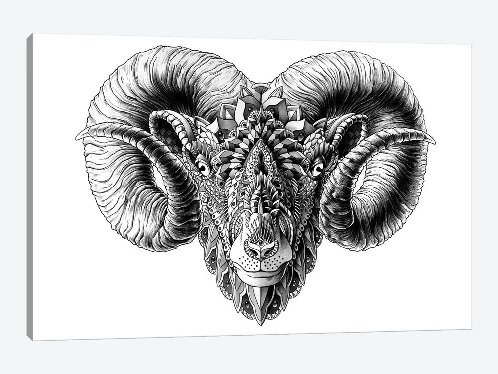 Ram's Head by BIOWORKZ 1-piece Canvas Art