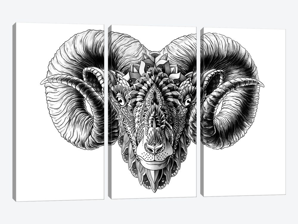 Ram's Head by BIOWORKZ 3-piece Canvas Artwork