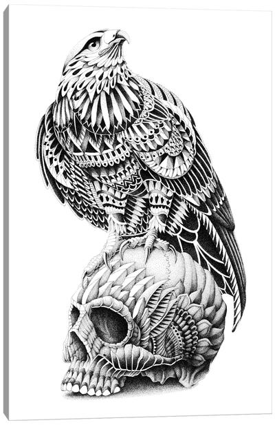 Red-Tailed Skull Canvas Art Print
