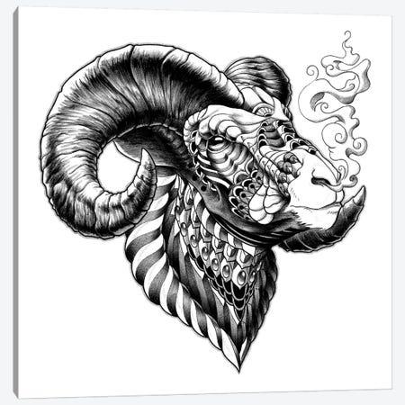 Big Horn Sheep Canvas Print #BWZ2} by Bioworkz Canvas Artwork