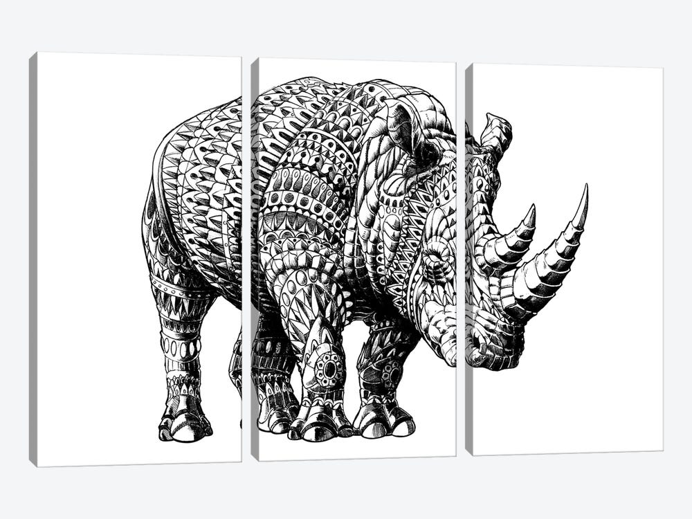 Rhino by BIOWORKZ 3-piece Canvas Wall Art