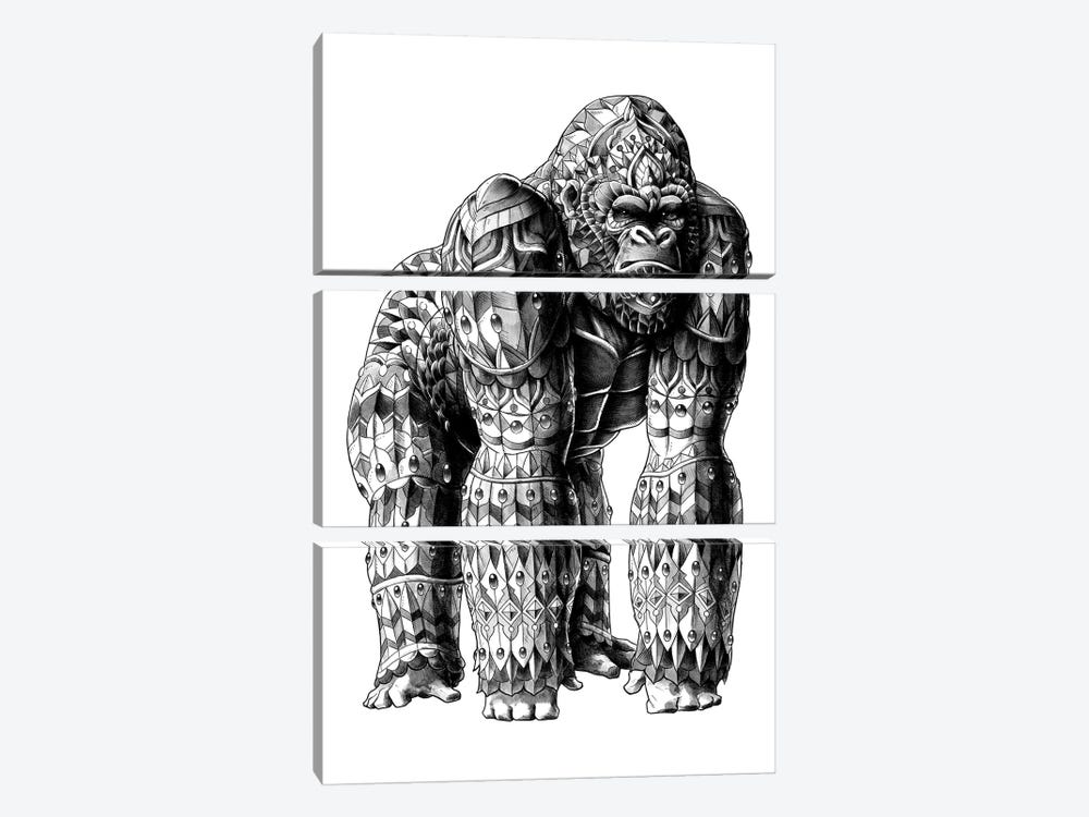 Silverback by BIOWORKZ 3-piece Canvas Artwork