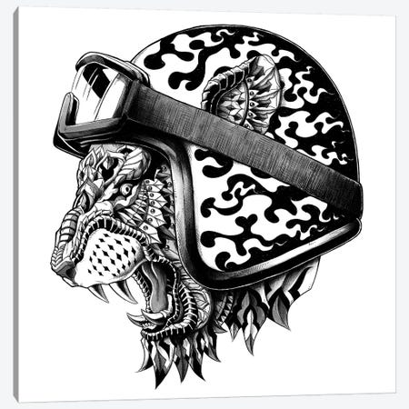 Tiger Helm 3-Piece Canvas #BWZ36} by Bioworkz Art Print