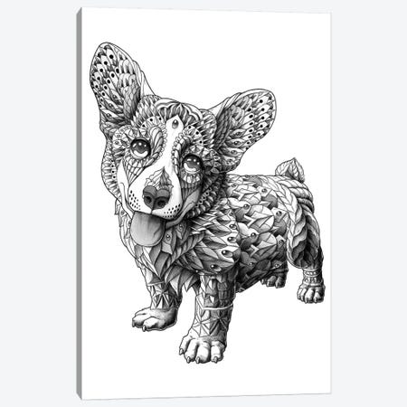 Corgi Canvas Print #BWZ47} by Bioworkz Canvas Wall Art