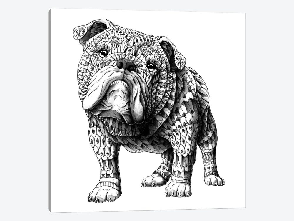 English Bulldog by Bioworkz 1-piece Art Print