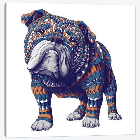 English Bulldog In Color I Canvas Print #BWZ49} by Bioworkz Canvas Print