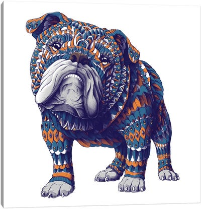 English Bulldog In Color I Canvas Art Print