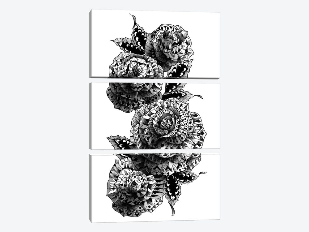 Four Roses by BIOWORKZ 3-piece Canvas Art Print