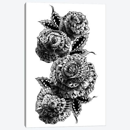 Four Roses Canvas Print #BWZ51} by Bioworkz Canvas Artwork