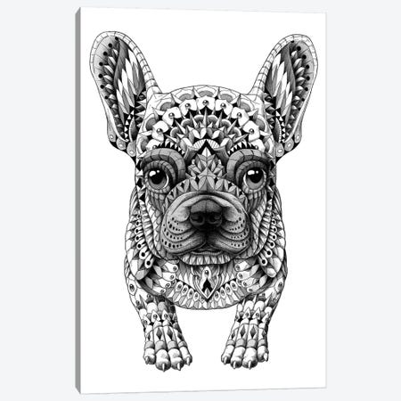 Frenchie Canvas Print #BWZ52} by Bioworkz Canvas Wall Art