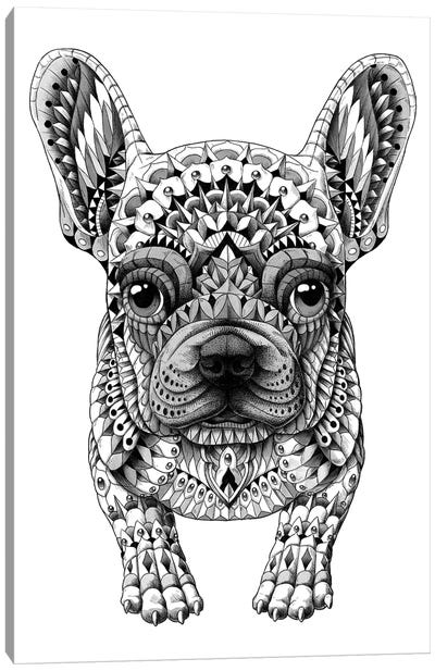 Frenchie Canvas Art Print