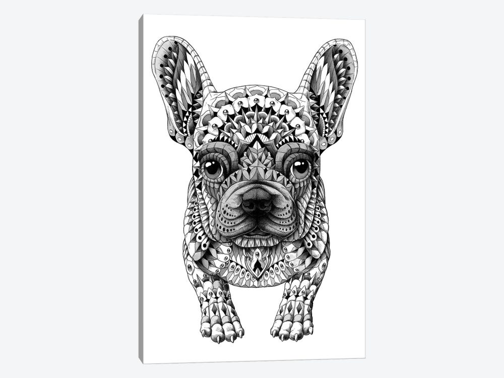 Frenchie by BIOWORKZ 1-piece Canvas Art