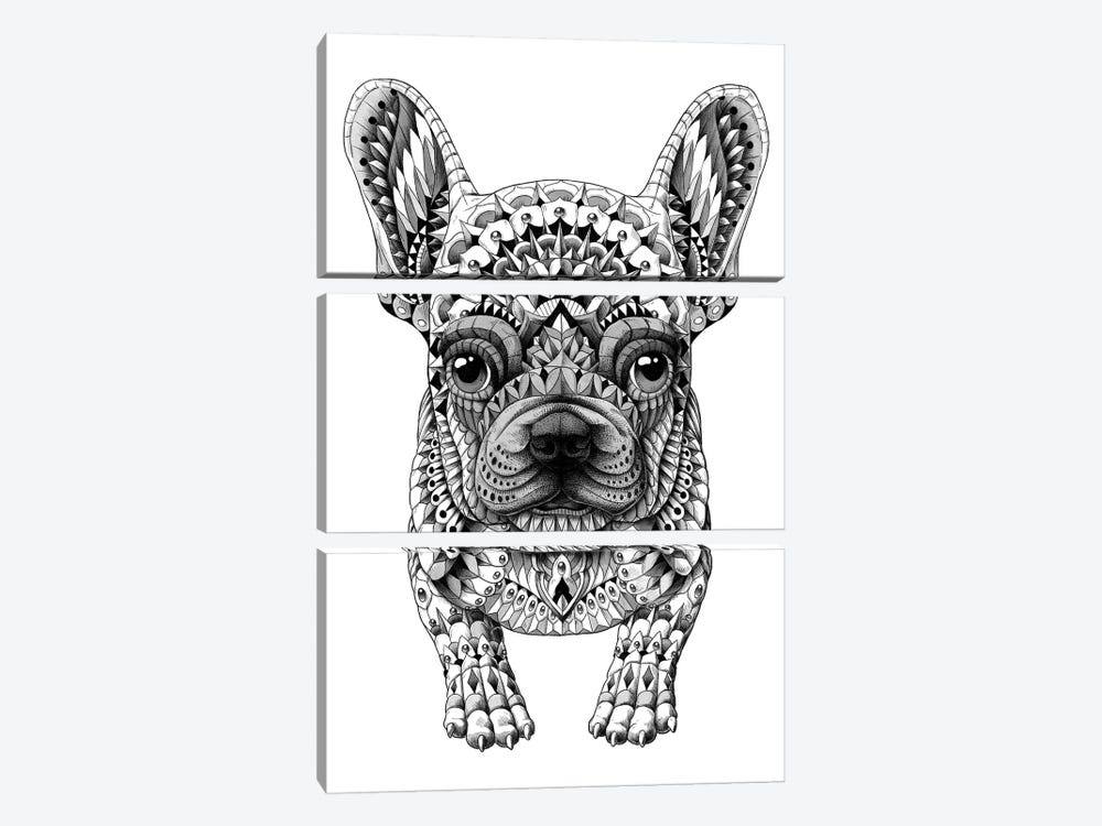 Frenchie by BIOWORKZ 3-piece Canvas Wall Art