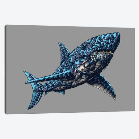 Great White Shark In Color I Canvas Print #BWZ59} by BIOWORKZ Canvas Artwork