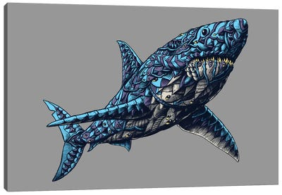 Great White Shark In Color I Canvas Art Print