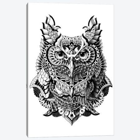 Century Owl Canvas Print #BWZ5} by Bioworkz Art Print
