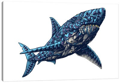 Great White Shark In Color II Canvas Art Print