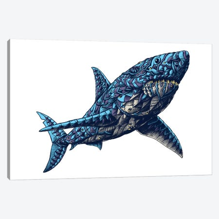 Great White Shark In Color II Canvas Print #BWZ60} by Bioworkz Canvas Print
