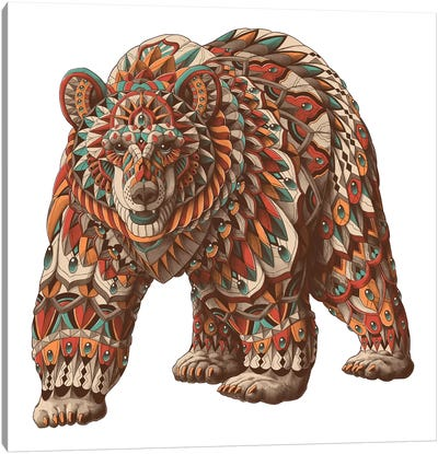 Grizzly Bear In Color I Canvas Art Print