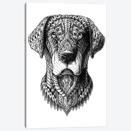 Labrador Canvas Print #BWZ63} by Bioworkz Canvas Print