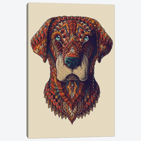 Labrador In Color I Canvas Print #BWZ64} by Bioworkz Canvas Artwork