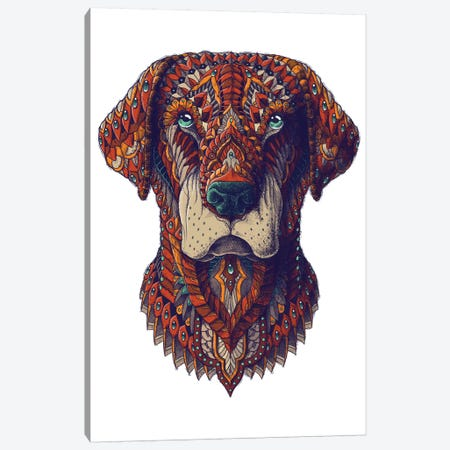 Labrador In Color II Canvas Print #BWZ65} by Bioworkz Canvas Artwork